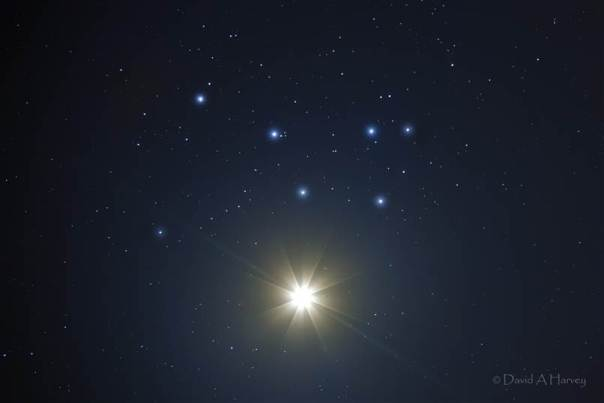Venus shining along with Pleiades