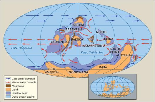 Global Map Gondwana.jpg