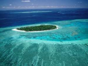 Island in Coral Sea,Image. Lady Musgrave Island.jpg