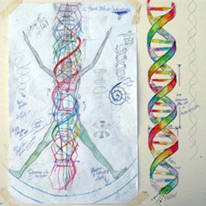 12_strand_dna_diagram