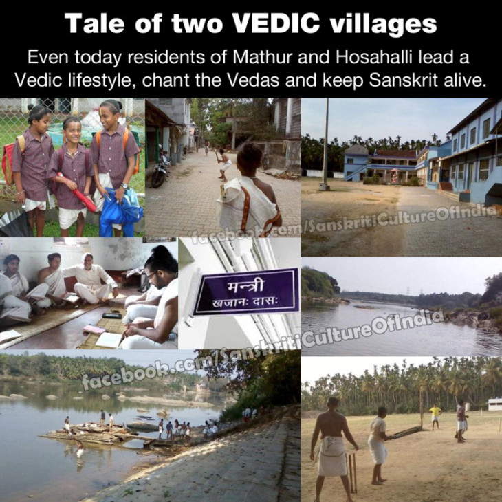 vedic-villages-795x795-730x730