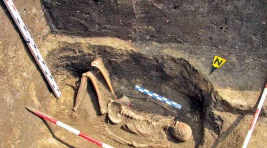 skeleton-of-a-giant
