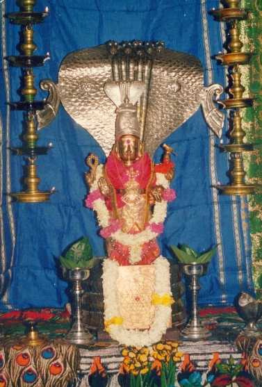 Naga worship in Lanka.