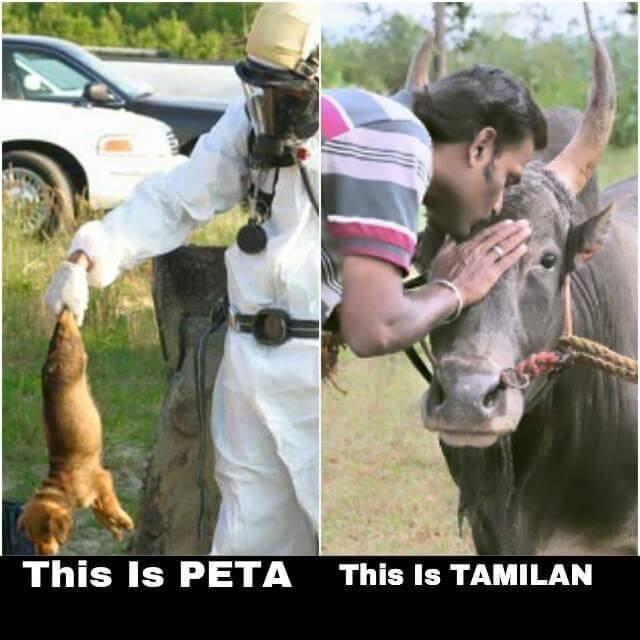 PETA Treatment of animals