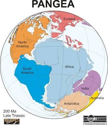 Pangea 250 million years old i.mage.