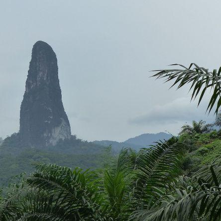 Pico cao Grande mountain. Gabon.image