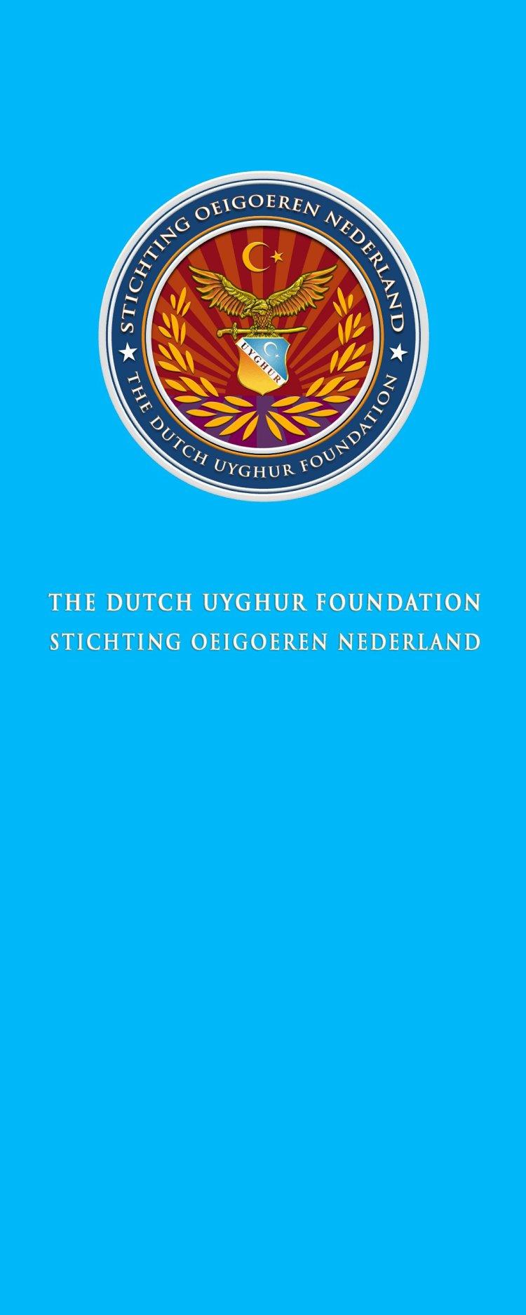 Uyghur Flag.Image.