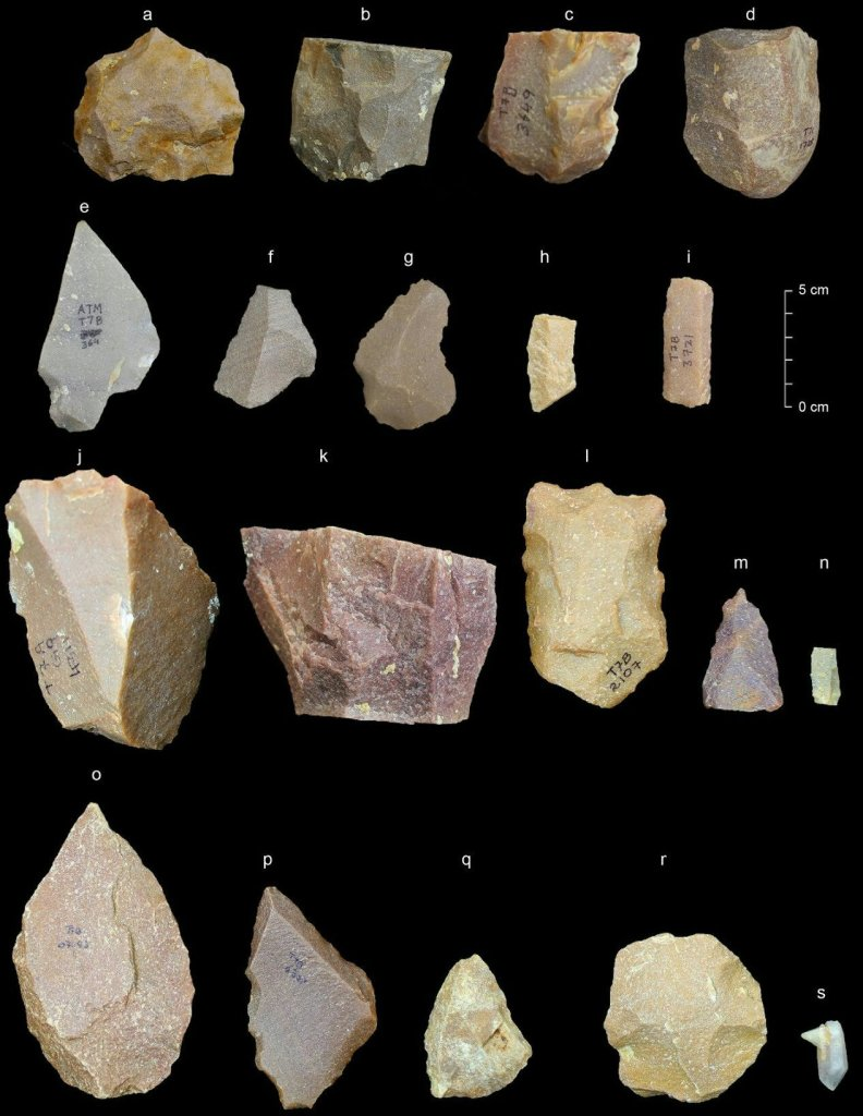 Some of the recovered stone tips, such as the one seen in the upper right of this image, have narrower bottom portions called tangs. Tangs would have made it easier to attach the points to handles, aiding in spear-making. PHOTOGRAPH BY SHARMA CENTRE FOR HERITAGE EDUCATION, India. Image
