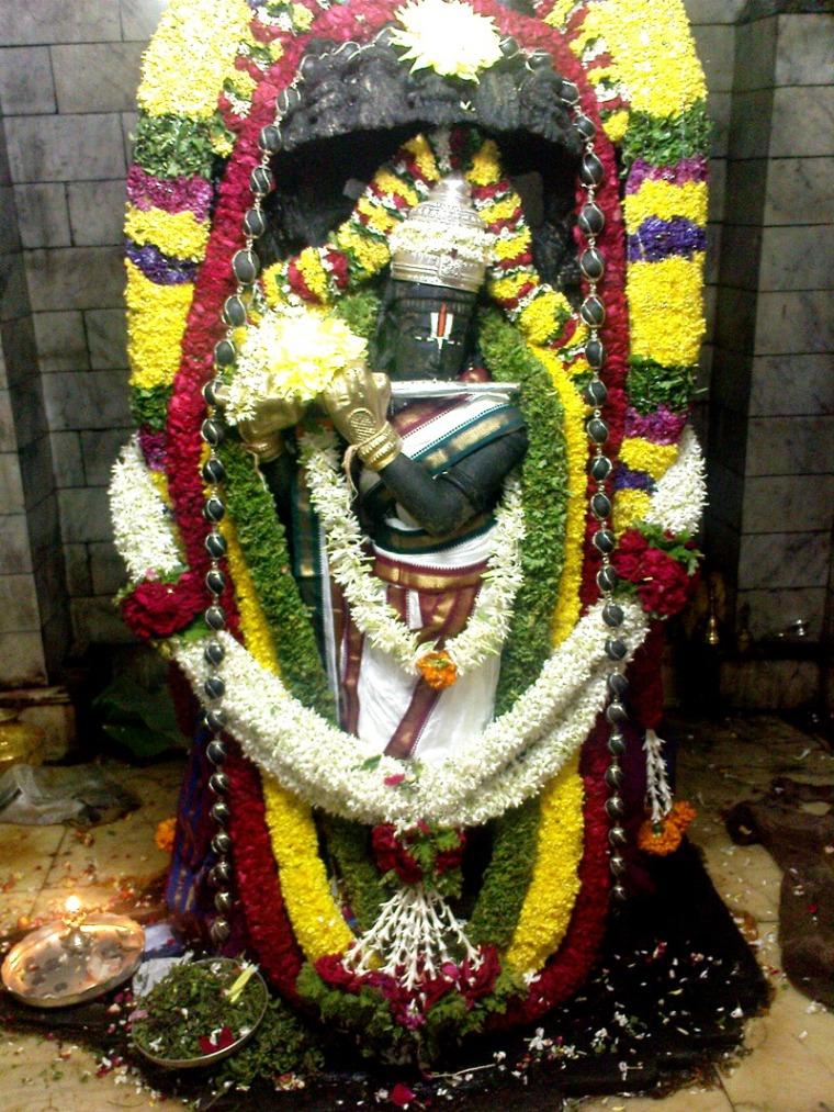 Himvad Gopalaswamy .image