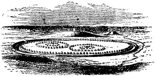 Abiry circle UK.image