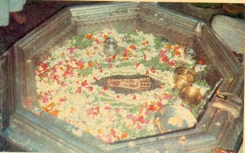 Feet of Vishnu,Gaya,India.image