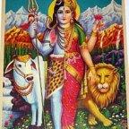 Shiva Kala Aradhana Pooja Kasi December 19 Live Rudrabhishek