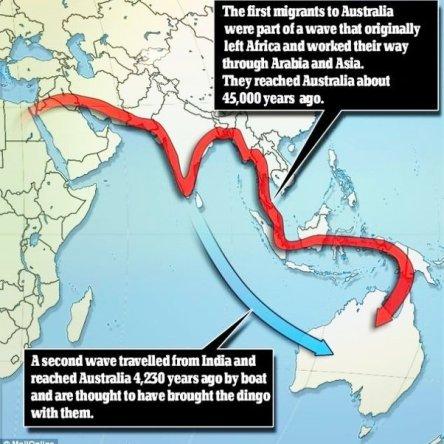 Human migration.image