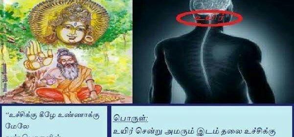 Thirumandhiram verse 309 and meaning.image