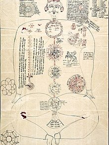 Nadis earliest reference image